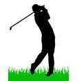 golfer vector image
