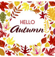 hello autumn banner with dry colored foliage vector image