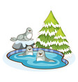 scene with cute seals in snow vector image vector image