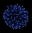 beautiful blue firework bright salute isolated on vector image vector image