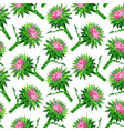 bud of prickly burdock with green stalk vector image vector image