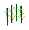 green bamboo stems sticks with green leaves icon vector image vector image