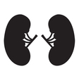 Kidney Icon Black vector image vector image