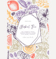 trendy design with hand sketched herbal tea vector image vector image