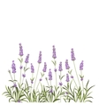 Wreath of lavender flowers vector image vector image