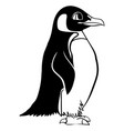 cartoon linear paint draw penguin vector image vector image