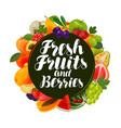 fresh fruits and berries banner natural food vector image vector image