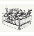 wooden crate full organic food isolated vector image