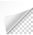 Curl paper corners vector image