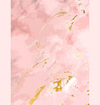 blush pink watercolor fluid painting design vector image vector image
