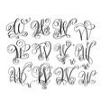 calligraphy lettering script font w set hand vector image vector image