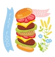 Cheeseburger ingredients on white background vector image