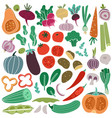 color vegetables hand drawn carrot onion cucumber vector image