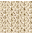 Cream Rose pattern vector image
