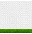 green grass and transparent background vector image vector image