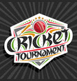logo for cricket tournament vector image