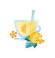 vitamin healthy herbal tea drink with lemon and vector image
