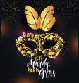 bright carnival icons mask and sign mardy gras vector image