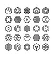 hexagon geometric icon ornament vector image