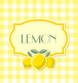 lemon label in retro style on squared background vector image