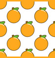 seamless pattern with orange fruit on white vector image