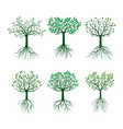 set green trees with leafs and roots vector image vector image