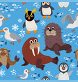 wild south pole animals pattern in flat style vector image
