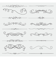 Black Doodle Hand Drawn Swirls Collection vector image vector image