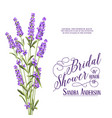 bridal shower invitation card vector image vector image