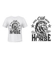 equestrian t-shirt print with steed stallion vector image
