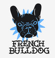 french bulldog graphics for tee print t shirt vector image vector image