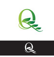 luxury tropical nature leaves letter q logo vector image vector image