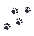 paw footprints vector image