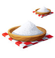salt isolated on white background detailed vector image vector image