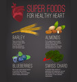 super foods for healthy heart vector image vector image
