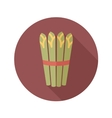 Asparagus flat icon with long shadow vector image vector image