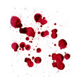 blood splashes image isolated on a white vector image vector image