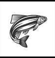 fish fresh seafood template design vector image
