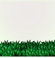 fresh grass banner eco concept vector image vector image