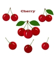 Juicy Ripe Cherry Fruits on a White Background vector image vector image