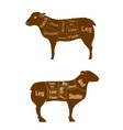 Lamb or mutton butcher cuts detailed diagram vector image