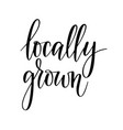locally grown lettering design for food vector image
