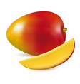 ripe fresh mango with slice vector image vector image