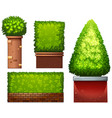 set of green plant vector image