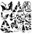 women shoes detail vector image