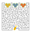 a square labyrinth help the bee collect honey vector image
