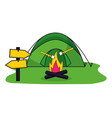 camping summer concept vector image vector image