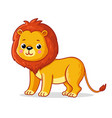 young lion on a white background cute african vector image