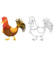animal outline for rooster vector image vector image