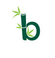 bamboo b letter logo design template vector image vector image